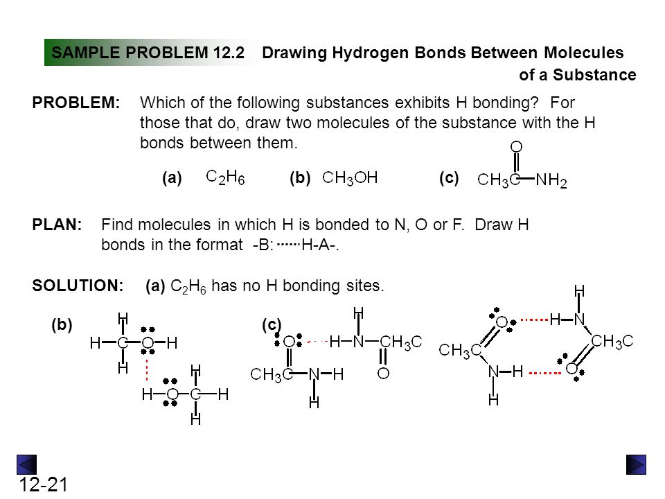 SAMPLE PROBLEM 12.2 Drawing Hydrogen Bonds Between Molecules. of a Substance. PROBLEM: