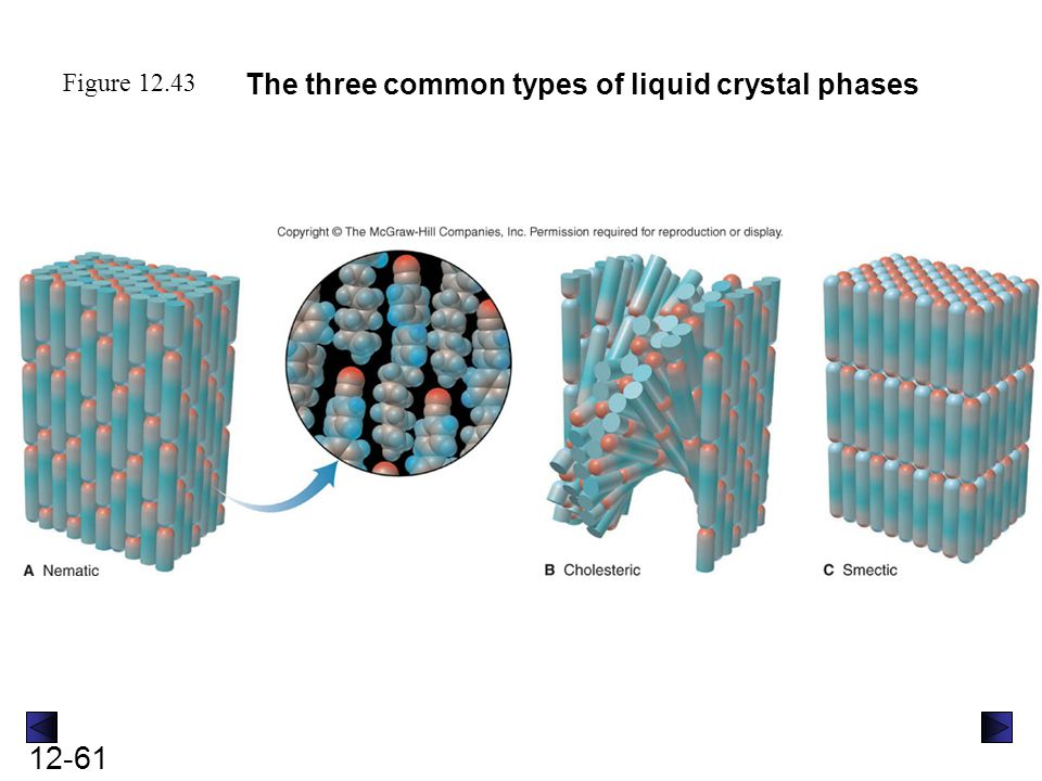 Intermolecular Forces Liquids Solids And Phase Changes