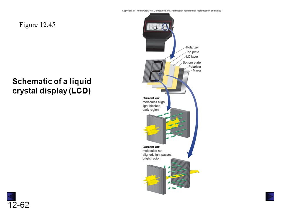 Schematic of a liquid crystal display (LCD)