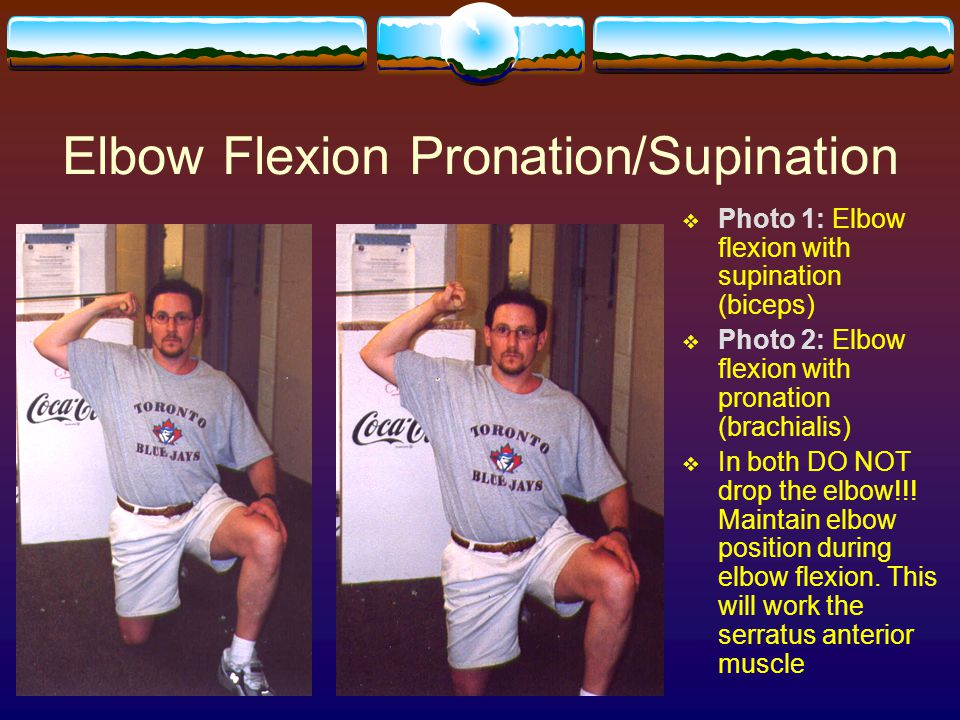 Elbow Flexion Pronation/Supination