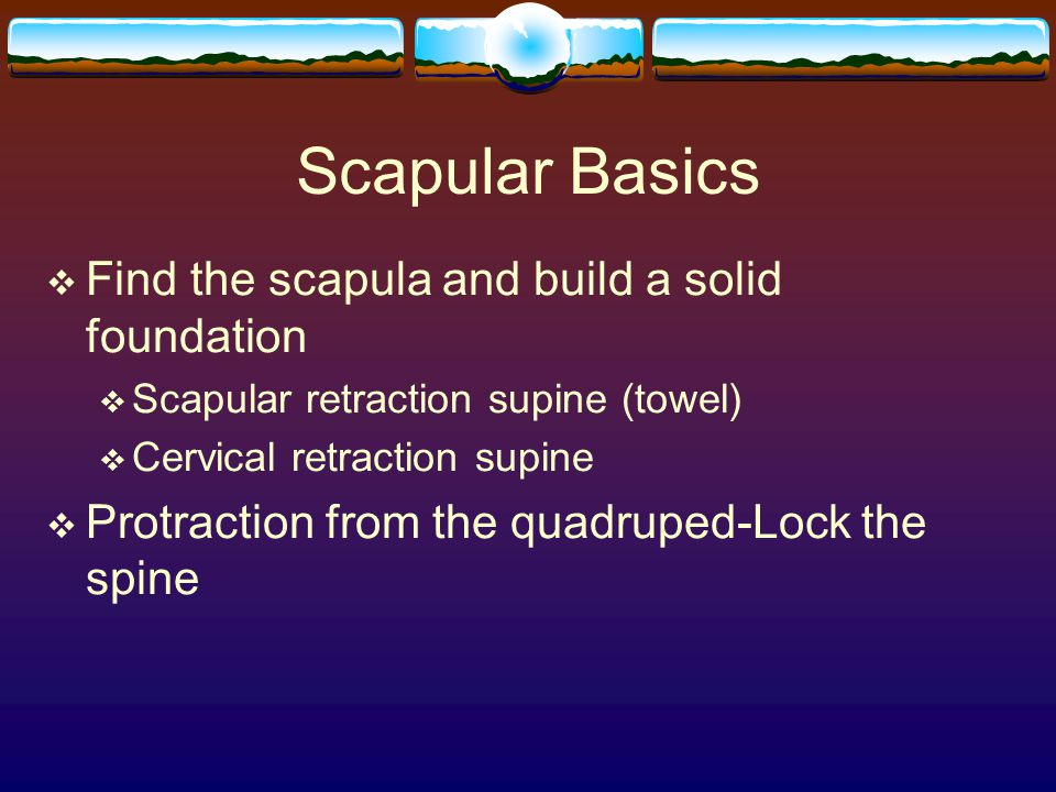 Scapular Basics Find the scapula and build a solid foundation