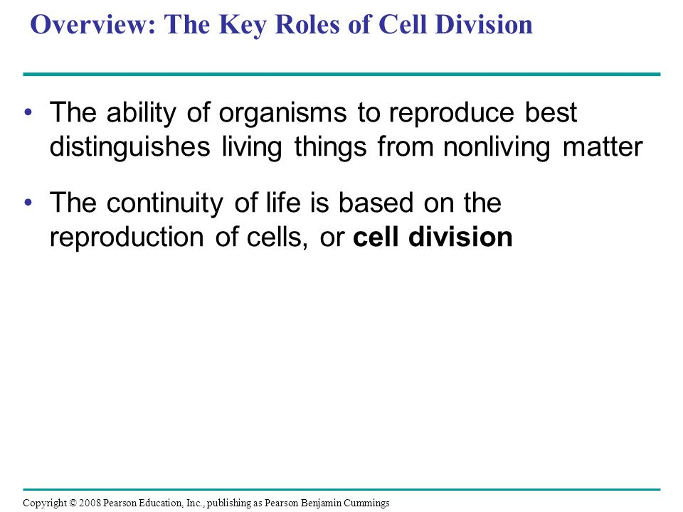 Overview: The Key Roles of Cell Division