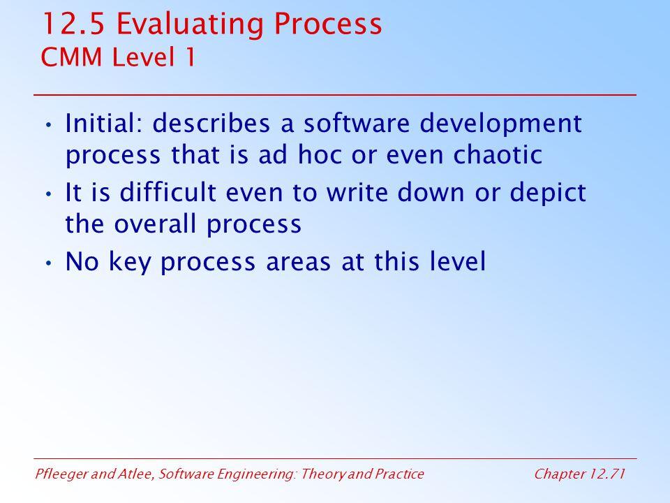 12.5 Evaluating Process CMM Level 1