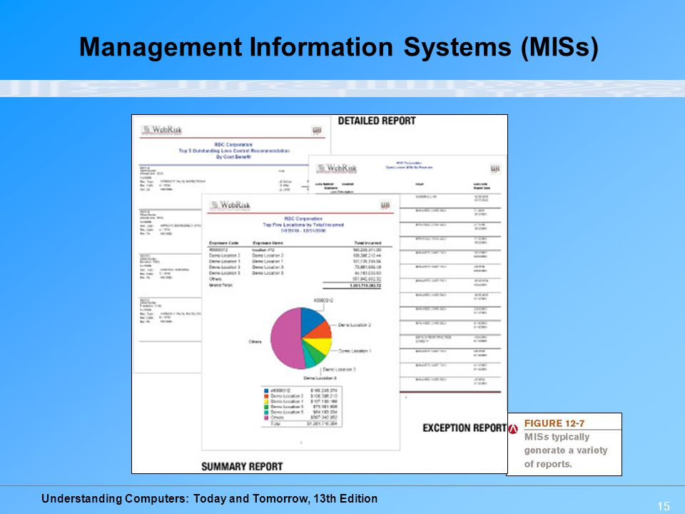 Management Information Systems (MISs)