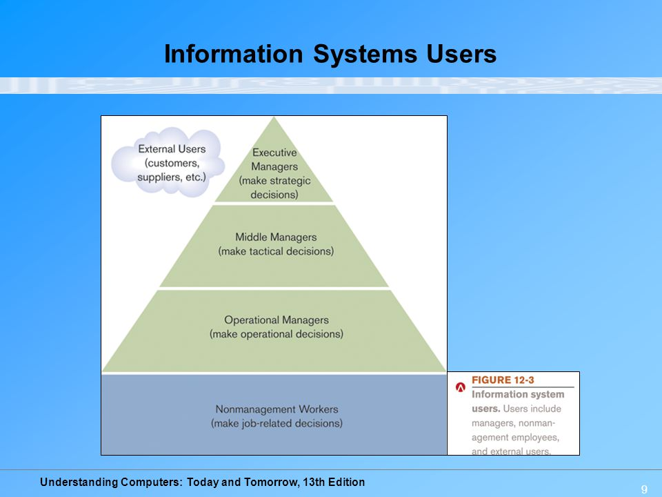 Information Systems Users