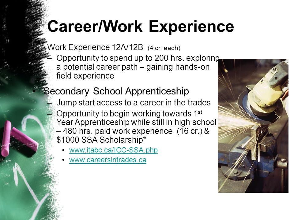 Career/Work Experience