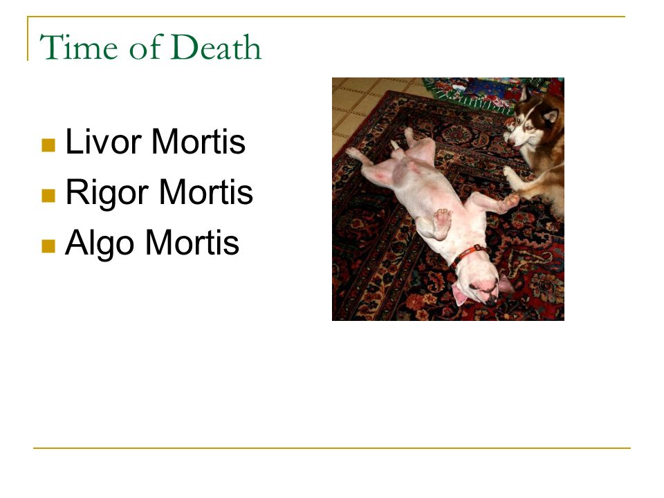 Time of Death Livor Mortis Rigor Mortis Algo Mortis
