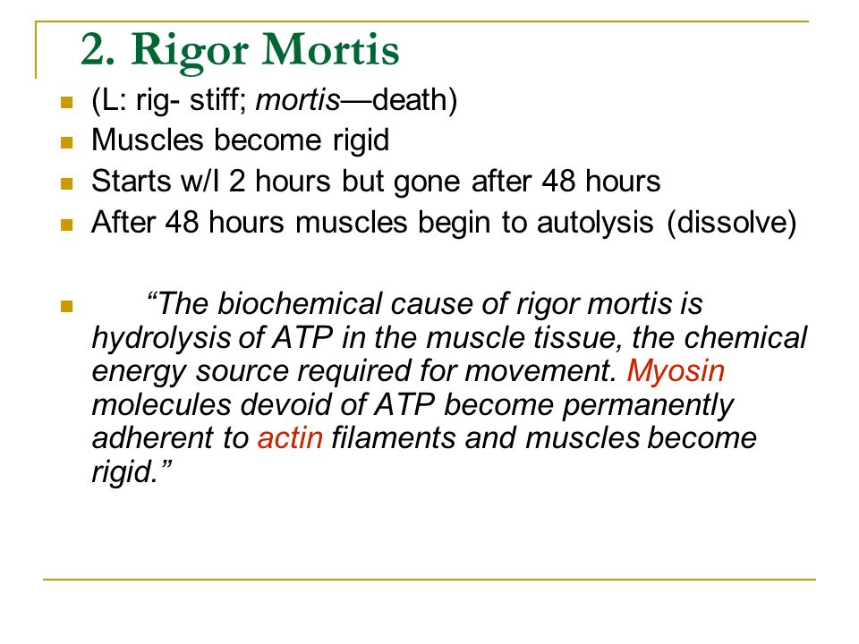 2. Rigor Mortis (L: rig- stiff; mortis—death) Muscles become rigid