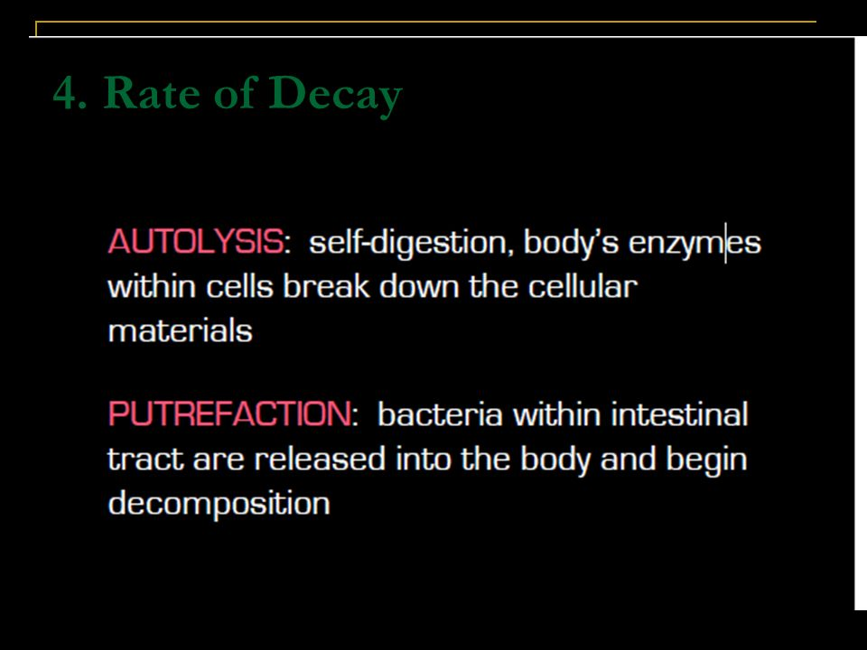 4. Rate of Decay