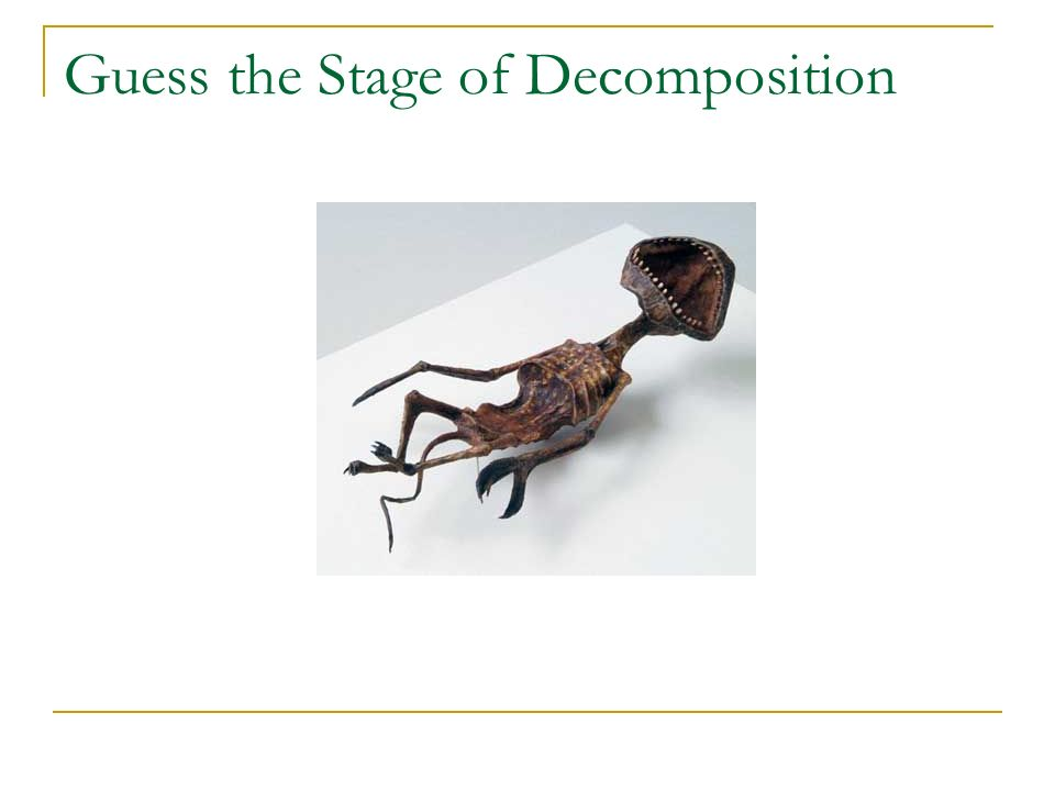 Guess the Stage of Decomposition