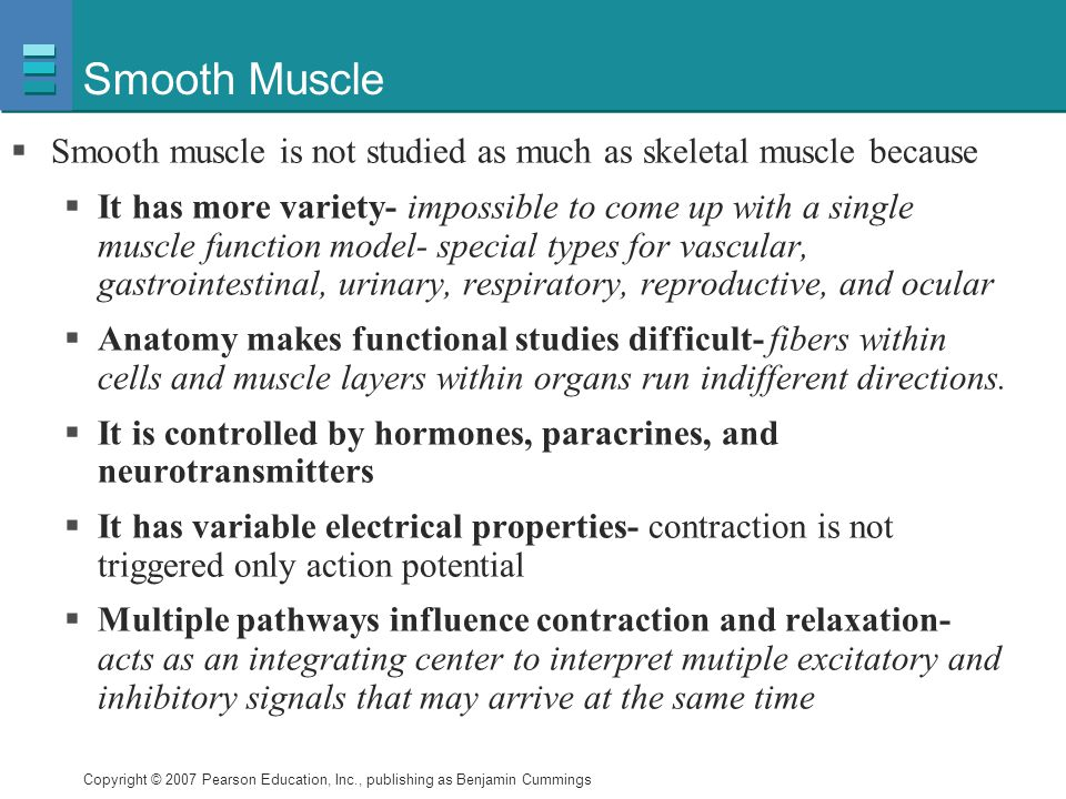 Smooth Muscle Smooth muscle is not studied as much as skeletal muscle because.