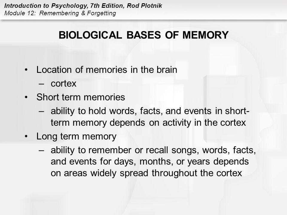 BIOLOGICAL BASES OF MEMORY