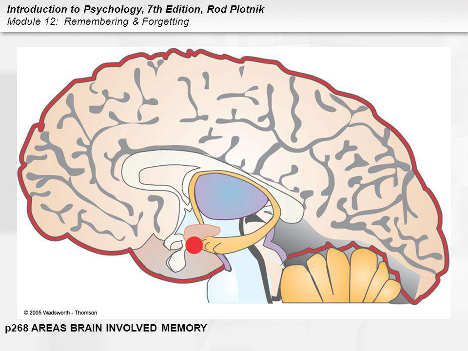 p268 AREAS BRAIN INVOLVED MEMORY