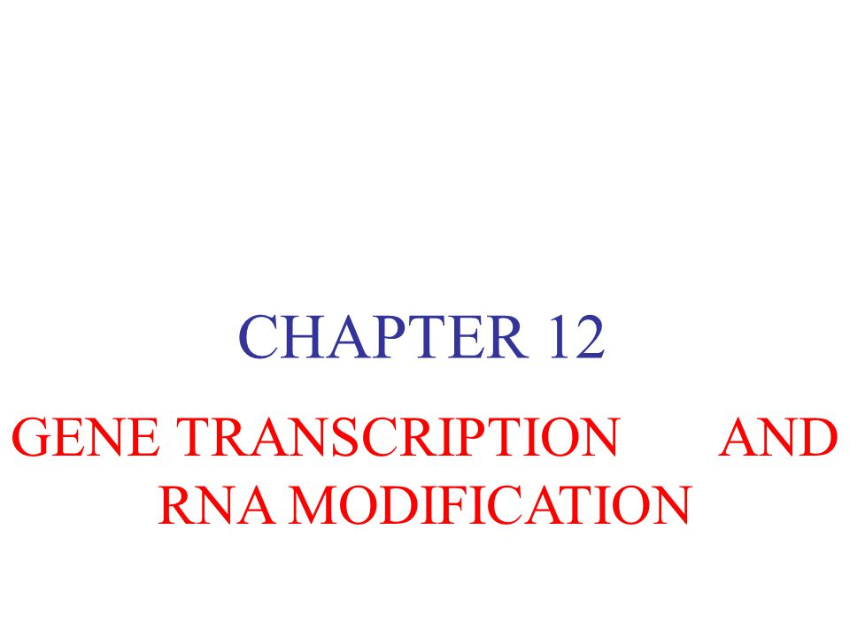 GENE TRANSCRIPTION AND RNA MODIFICATION