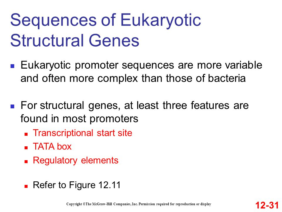 Sequences of Eukaryotic Structural Genes