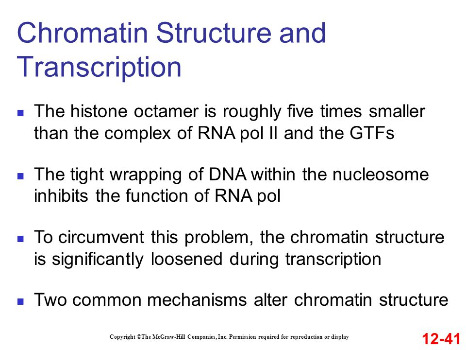 Chromatin Structure and Transcription