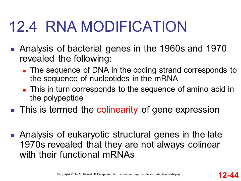 12.4 RNA MODIFICATION Analysis of bacterial genes in the 1960s and 1970 revealed the following: