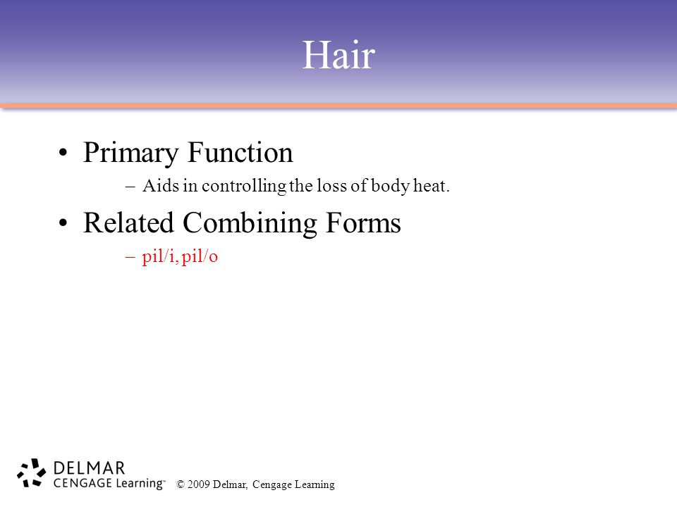 Hair Primary Function Related Combining Forms