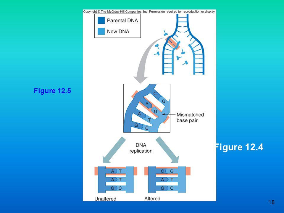 Figure 12.5 Figure 12.4