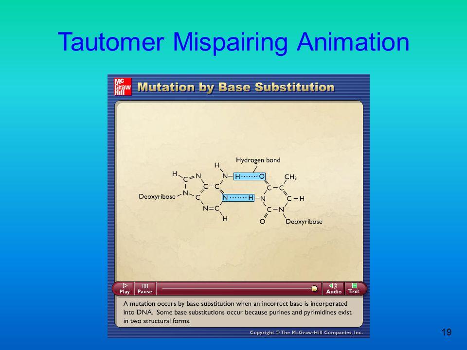 Tautomer Mispairing Animation