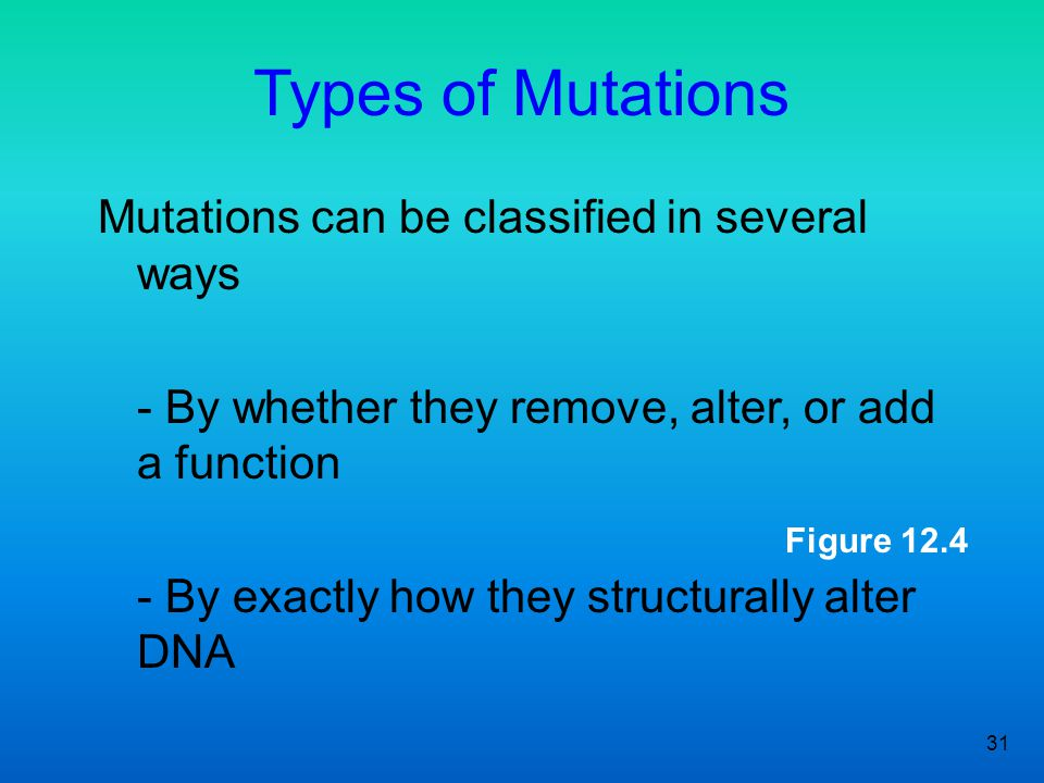 Types of Mutations Mutations can be classified in several ways