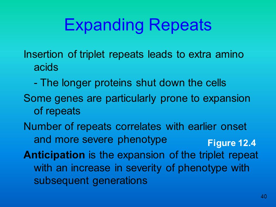 Expanding Repeats Insertion of triplet repeats leads to extra amino acids. - The longer proteins shut down the cells.