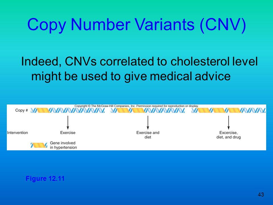 Copy Number Variants (CNV)