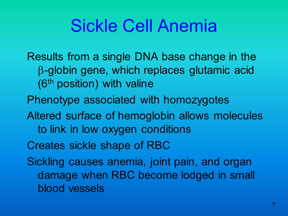 Sickle Cell Anemia Results from a single DNA base change in the b-globin gene, which replaces glutamic acid (6th position) with valine.