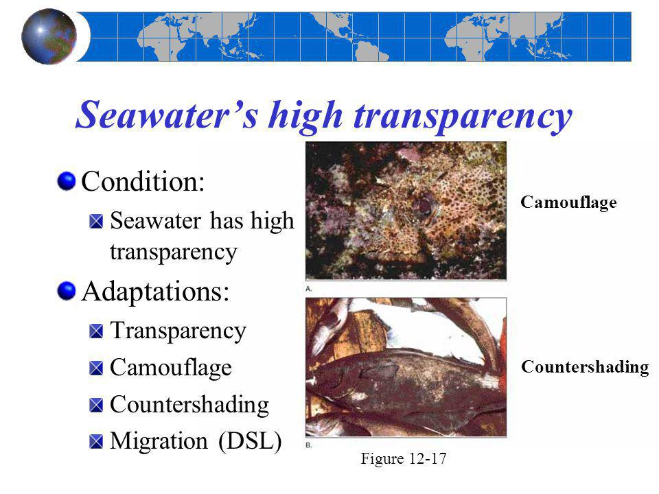 Seawater's high transparency