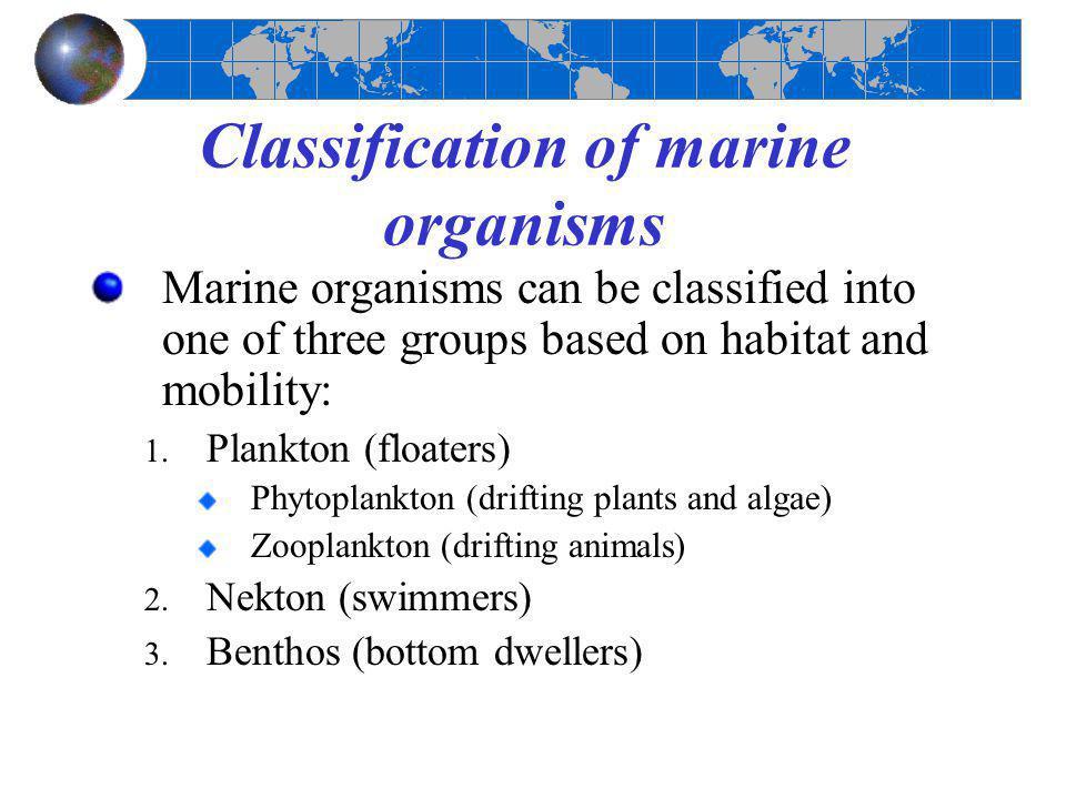 Classification of marine organisms