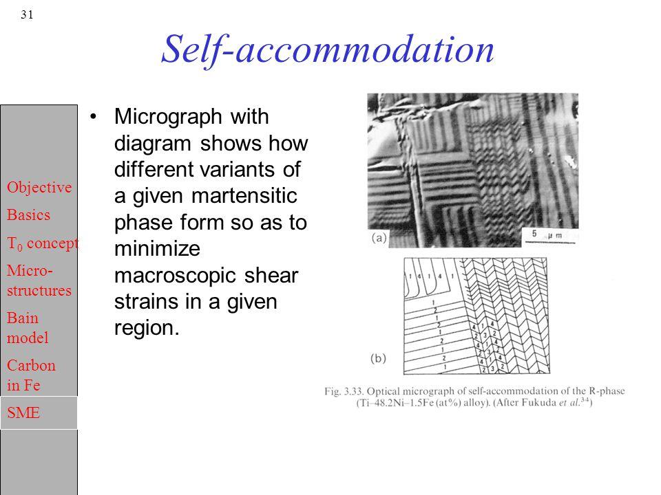 Self-accommodation