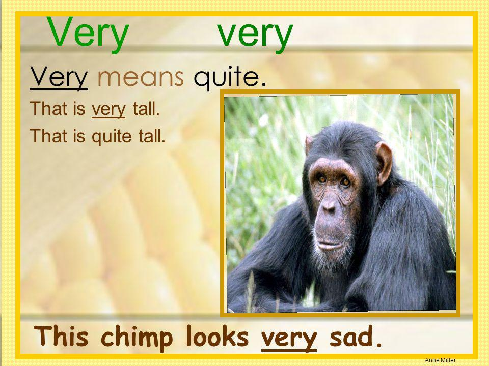 Very very Very means quite. This chimp looks very sad.