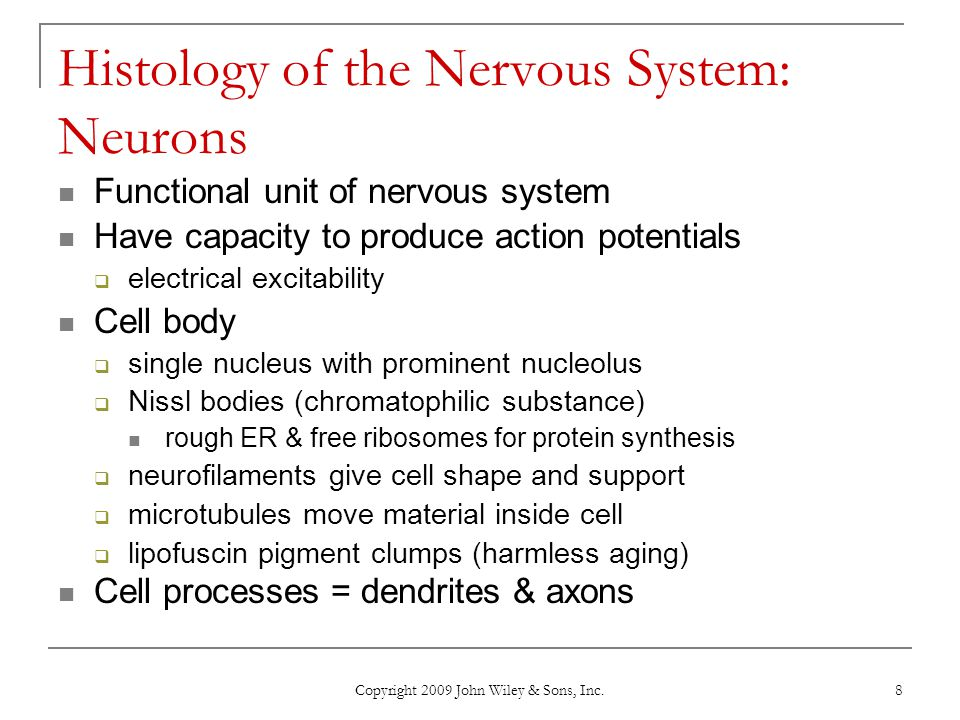 Histology of the Nervous System: Neurons