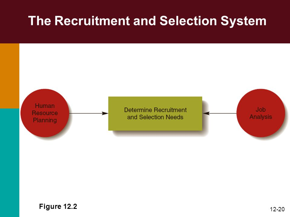 recruitment and selection in hr 3 human resources office e humanresources@tamuccedu o 3618252630 f 3618255871  introduction  this manual will aid in the recruitment and selection process to fill staff (non-faculty).