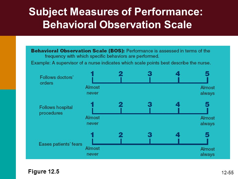 Subject Measures of Performance: Behavioral Observation Scale