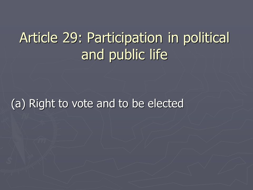 Article 29: Participation in political and public life