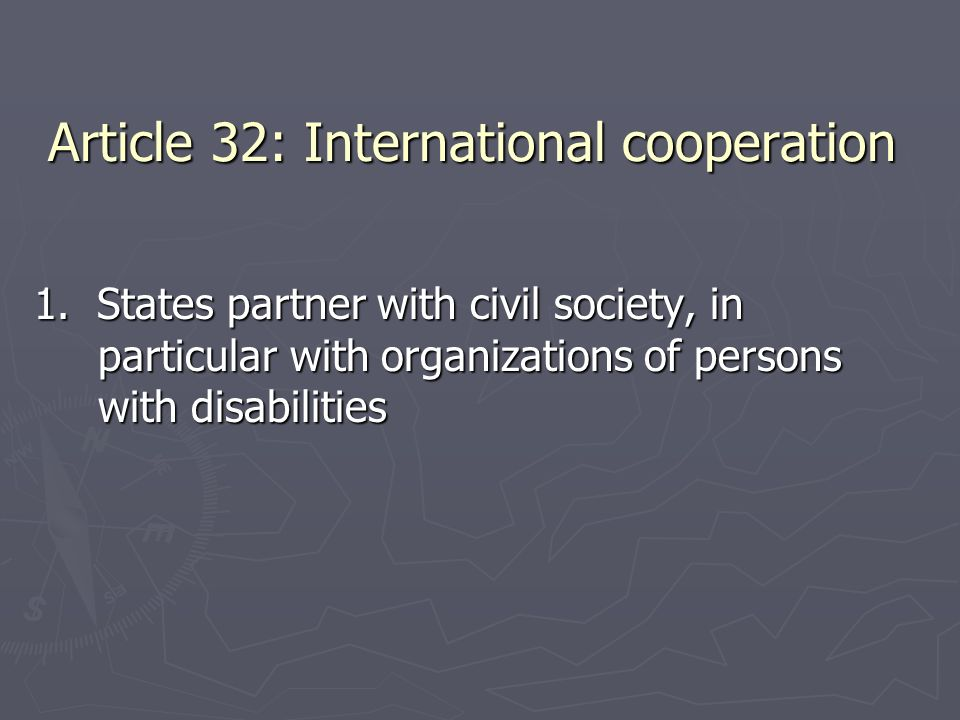 Article 32: International cooperation