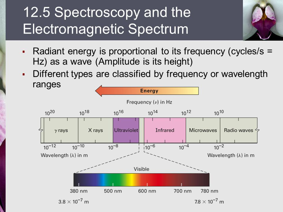 12.5 Spectroscopy and the Electromagnetic Spectrum