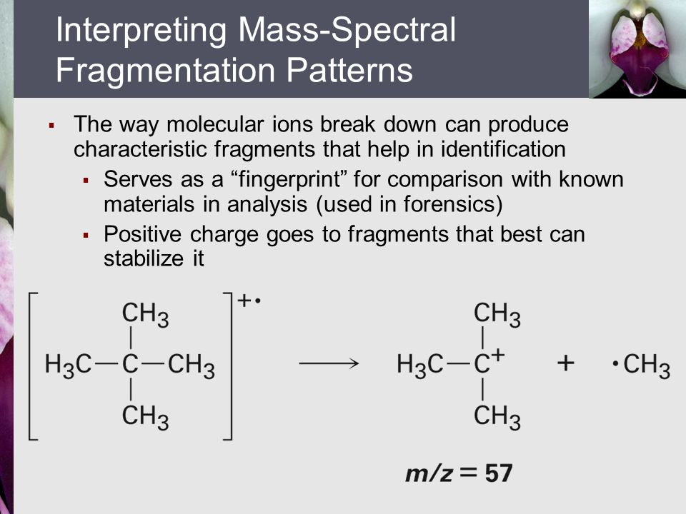Interpreting Mass-Spectral Fragmentation Patterns