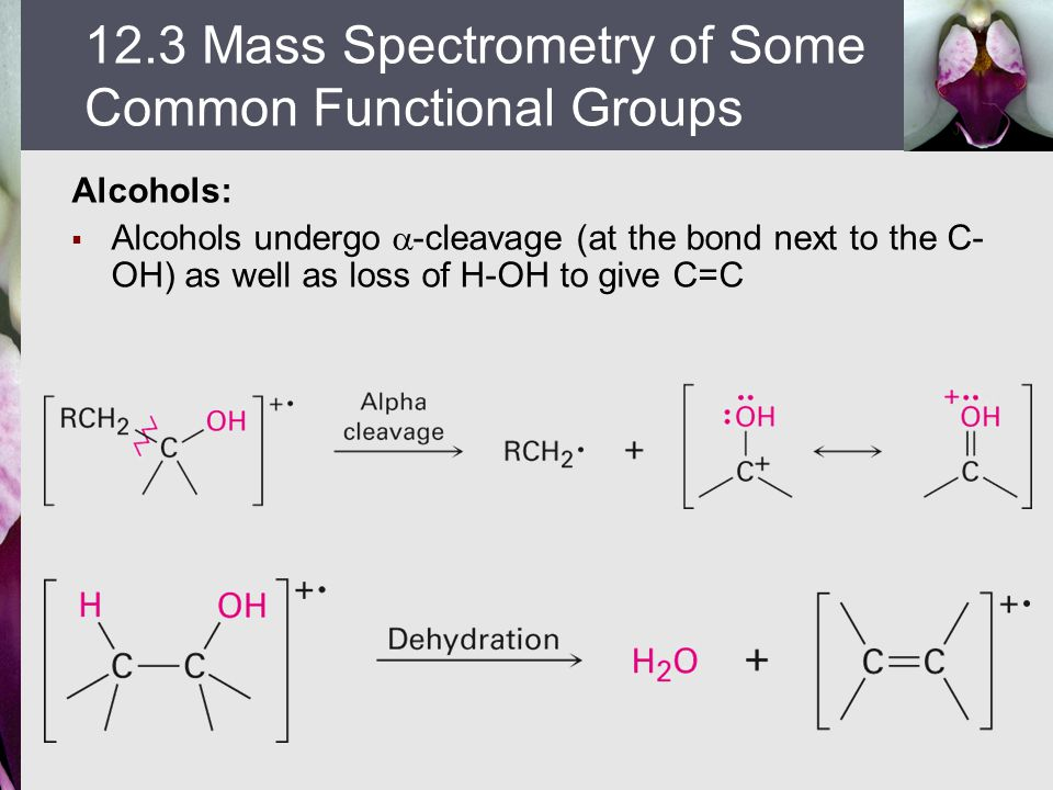 12.3 Mass Spectrometry of Some Common Functional Groups
