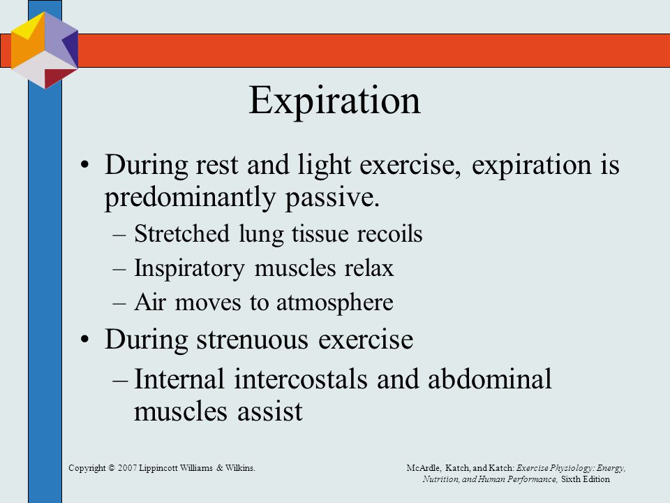 Expiration During rest and light exercise, expiration is predominantly passive. Stretched lung tissue recoils.