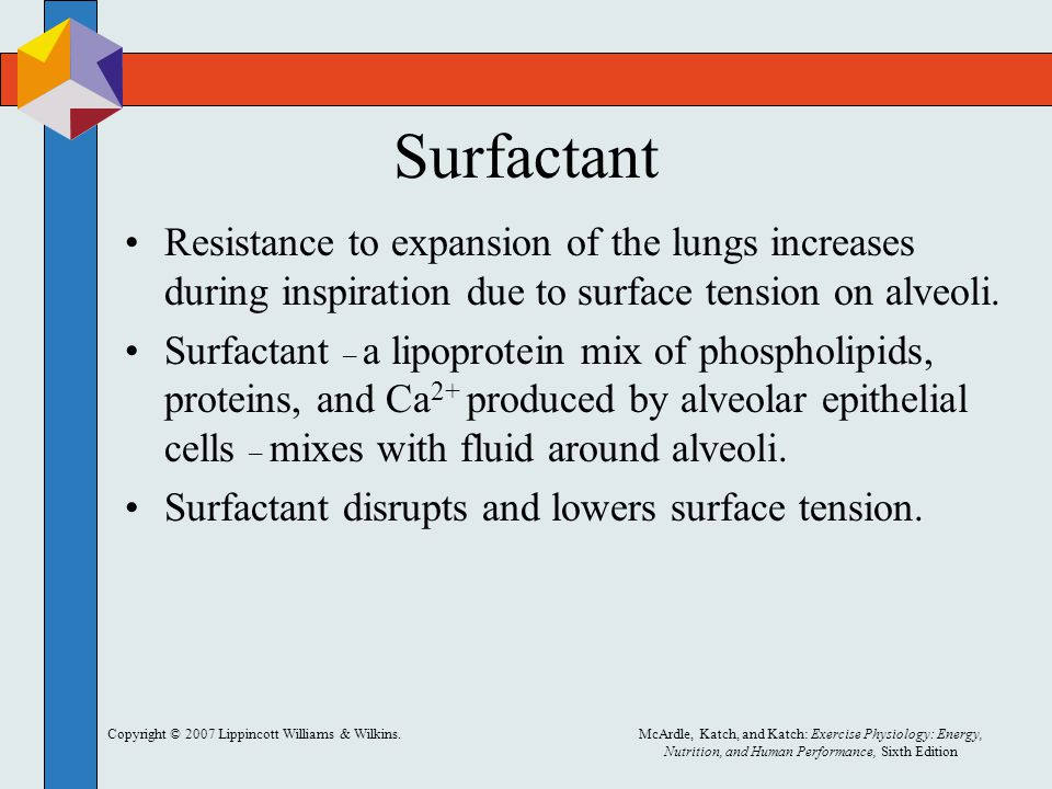 Surfactant Resistance to expansion of the lungs increases during inspiration due to surface tension on alveoli.