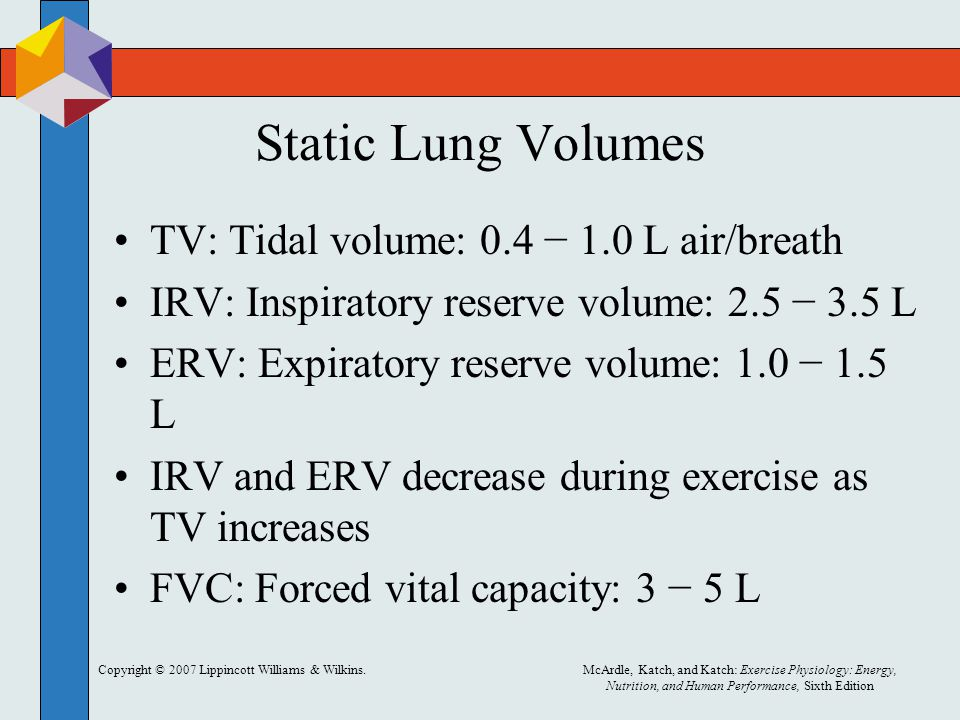 Static Lung Volumes TV: Tidal volume: 0.4 − 1.0 L air/breath