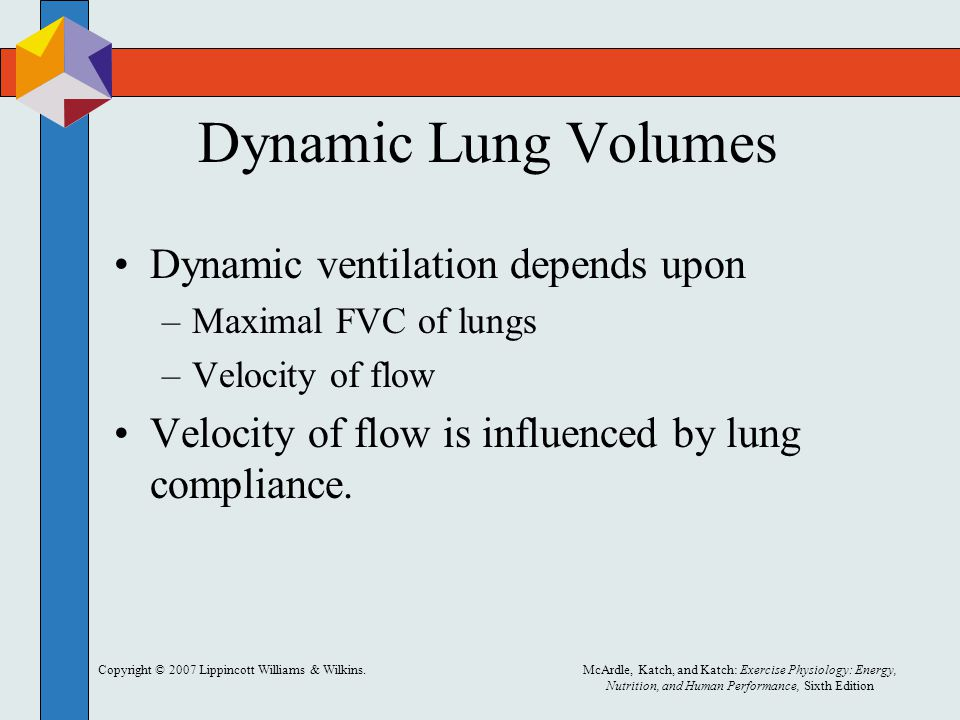 Dynamic Lung Volumes Dynamic ventilation depends upon