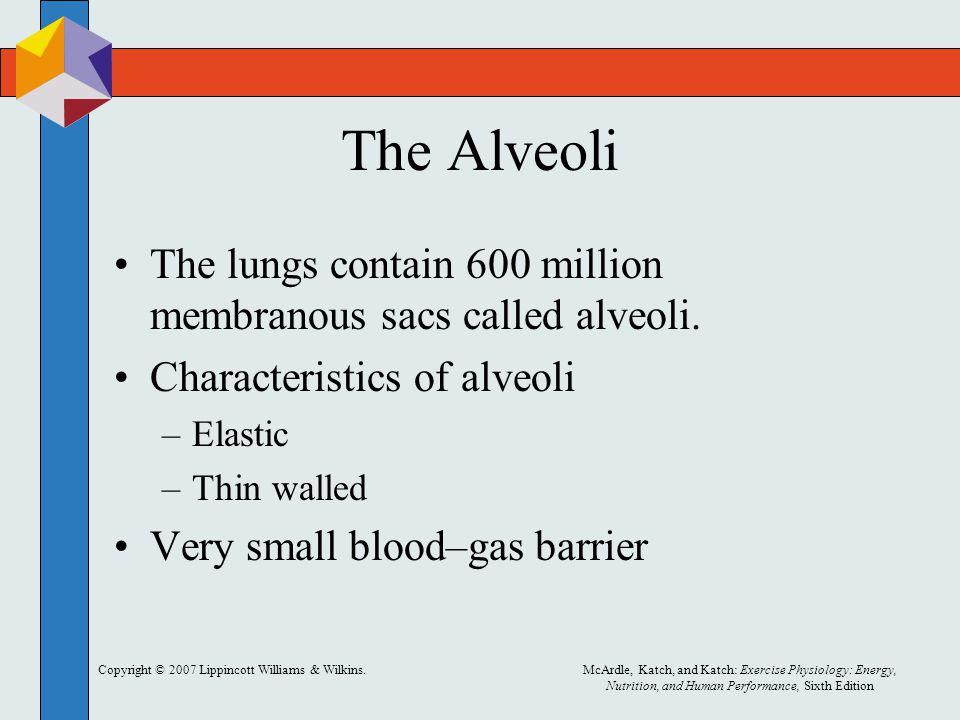 The Alveoli The lungs contain 600 million membranous sacs called alveoli. Characteristics of alveoli.