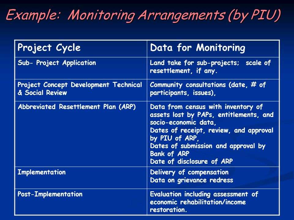 Example: Monitoring Arrangements (by PIU)