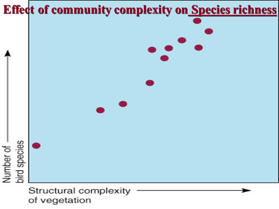 Effect of community complexity on Species richness