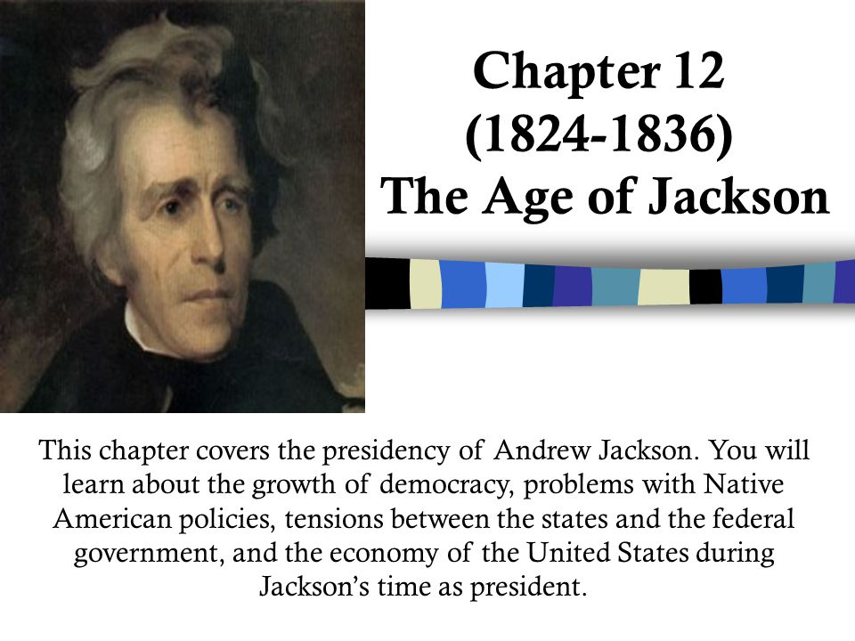the impact of the jacksonian era on the united states Jackson era 1824-1845 the impact today in the years since the jackson era: • women, african americans, and other minorities have won the right to vote and to participate in the political process the united states, that would shape the nation's economy.