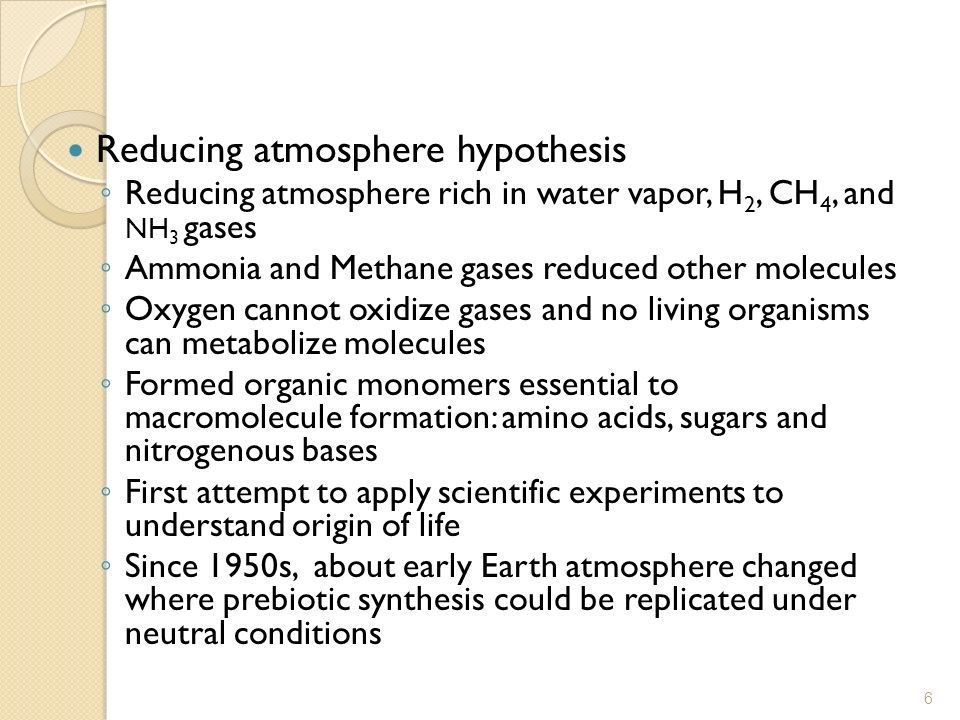 Reducing atmosphere hypothesis