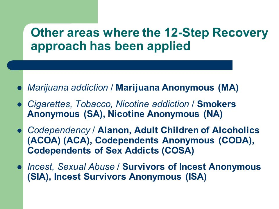 Other areas where the 12-Step Recovery approach has been applied